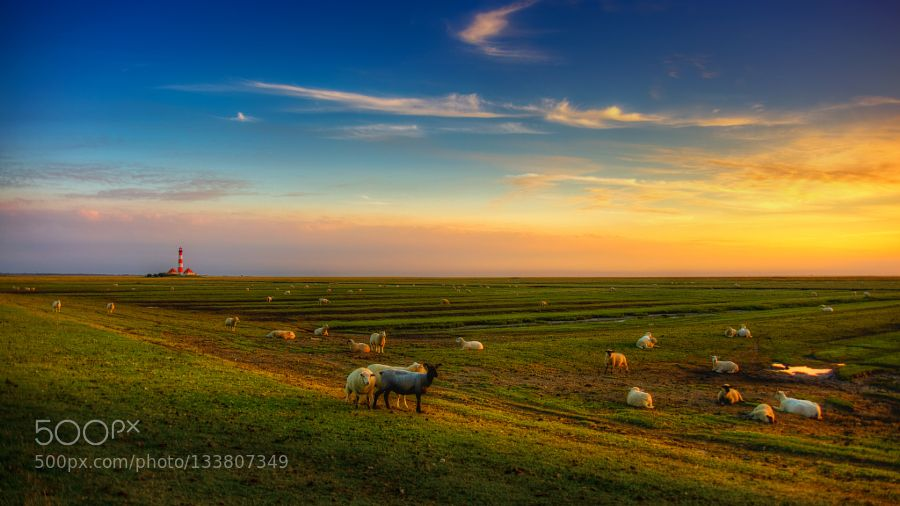 "freedom time - Pinned by Mak Khalaf a little summer-reminder editing inspiration: lauryn hill ""freedom time"" Landscapes germanyleuchtturmlighthousenorth seaschleswig-holsteinwesterheverschles by DeSelby"