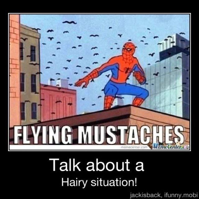 Flying Mustashes Hetalia Funny Spiderman Meme Funny Pictures