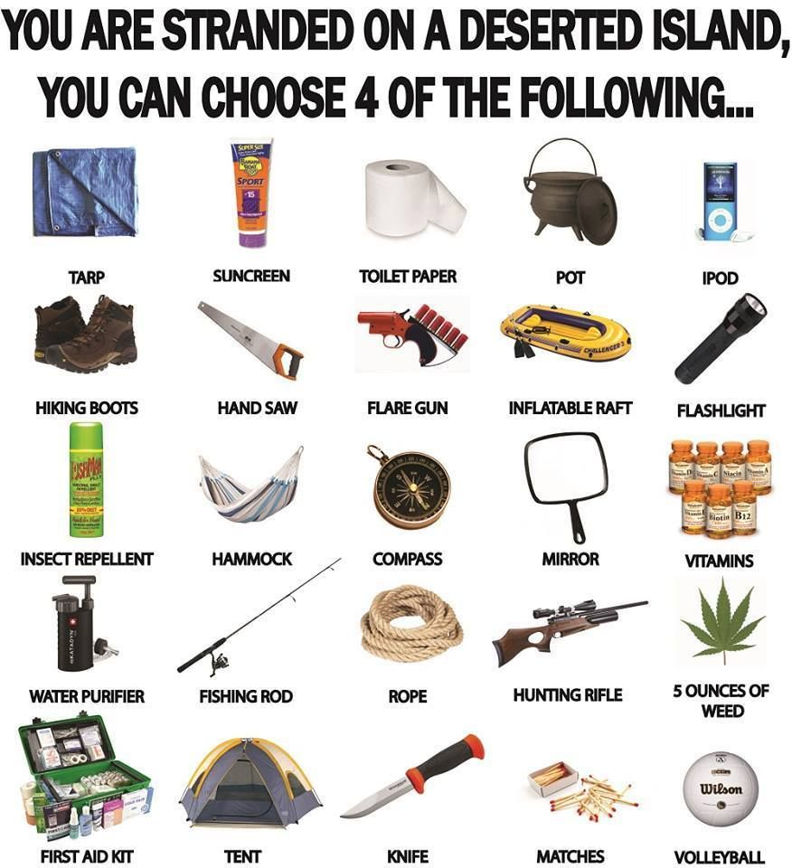 You are stranded on a deserted island and can choose 4 of these items. What  do you choose?