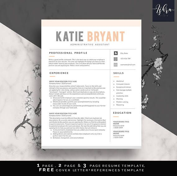 Buy One Get One FREE Resume Template, Professional Resume Template - where can i get a free resume template