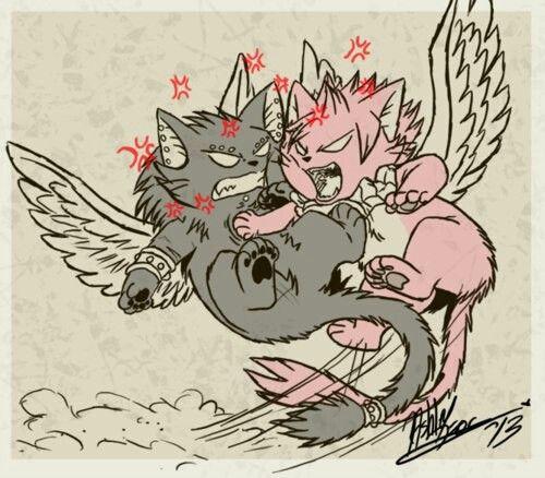 Natsu and Gajel as a cats