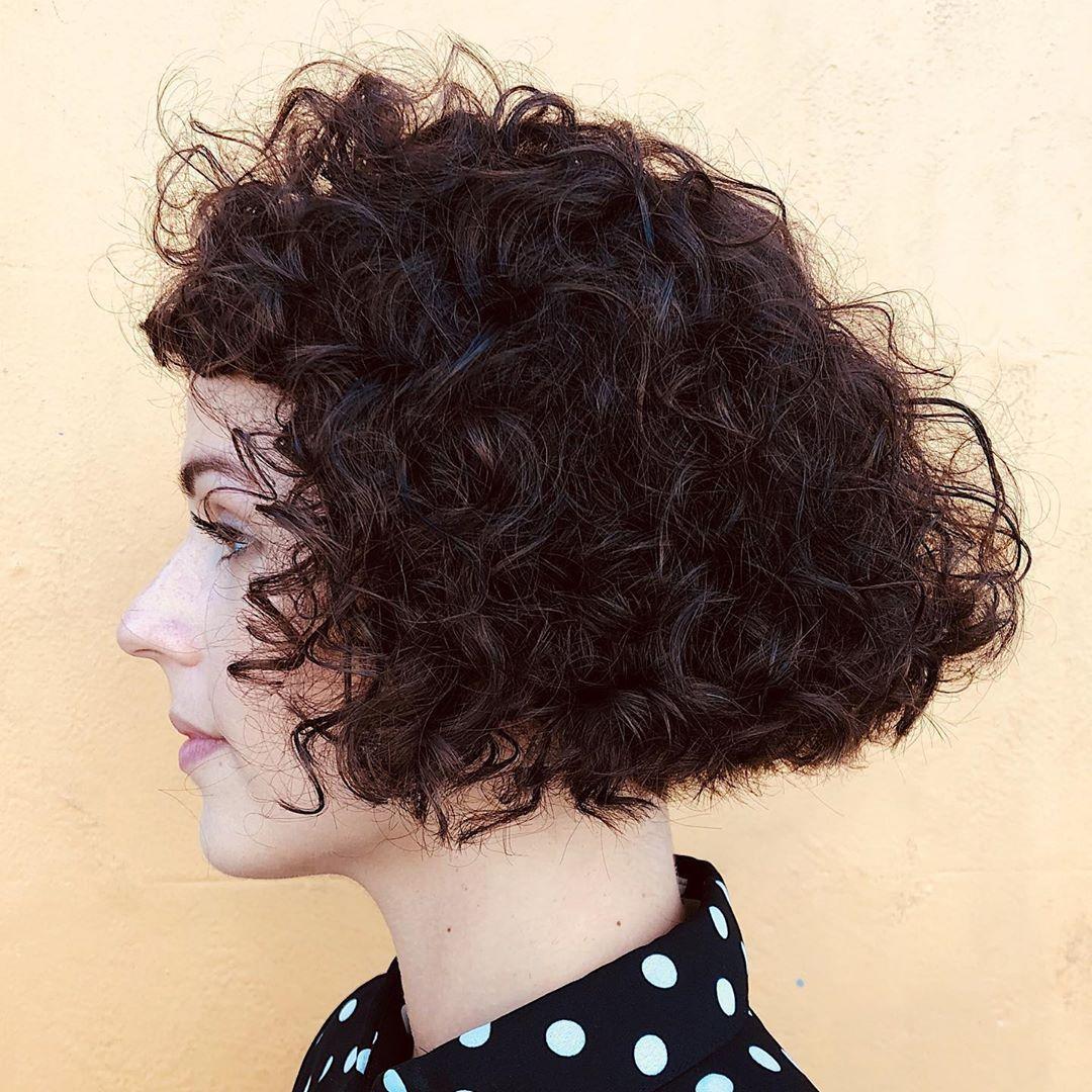 29 Short Curly Hair Ideas Trending Right Now (Hairstyles + Haircuts) in  2020 | Curly hair styles, Short curly hair, Hair highlights