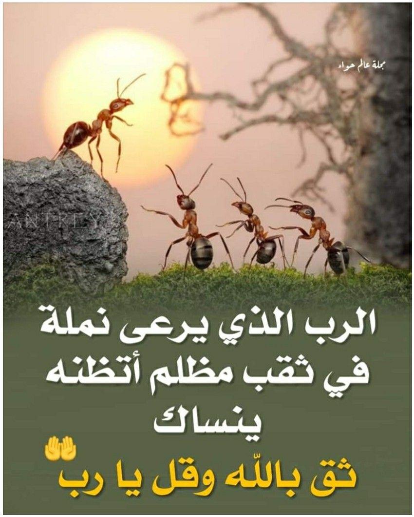 Pin On Islam Religion