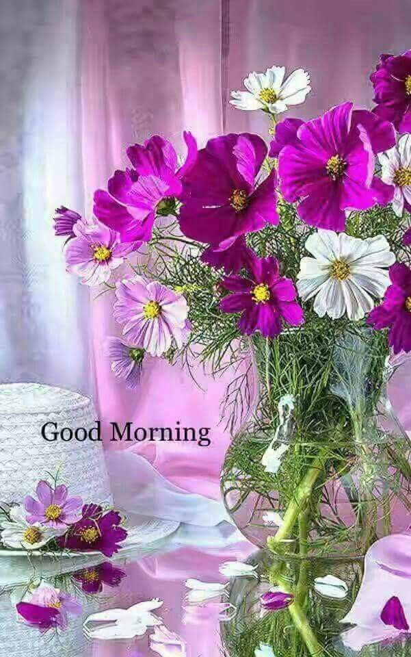 Pin By Beth Pozzini Putz On Good Morning Good Morning Flowers Cosmos Flowers Beautiful Flower Arrangements