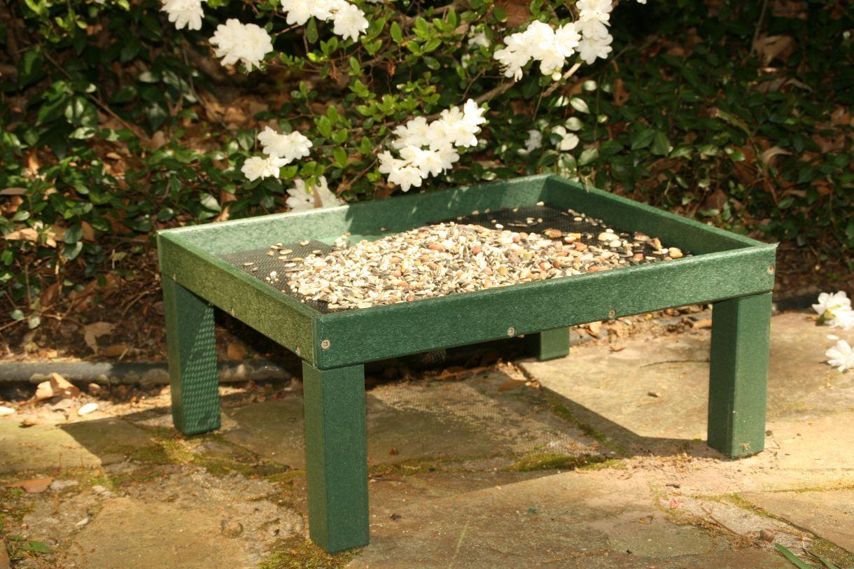 birdfeeders - Google Search | Backyard, Backyard birds ...