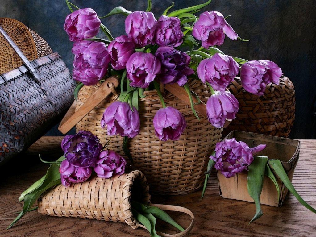 راهنمای انتخاب و خرید گل و گیاه مصنوعی