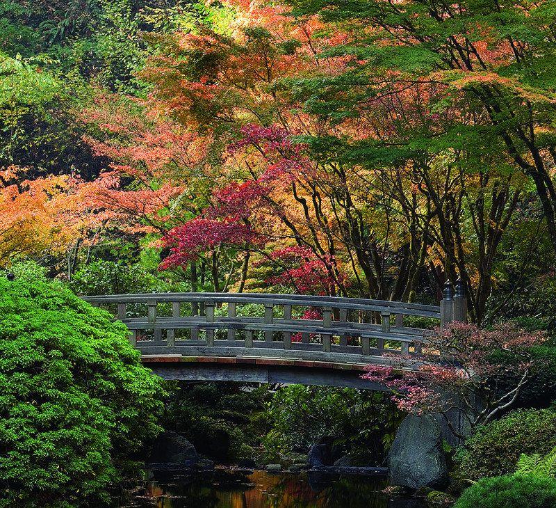 Portland Japanese Garden Portland japanese garden, Japan