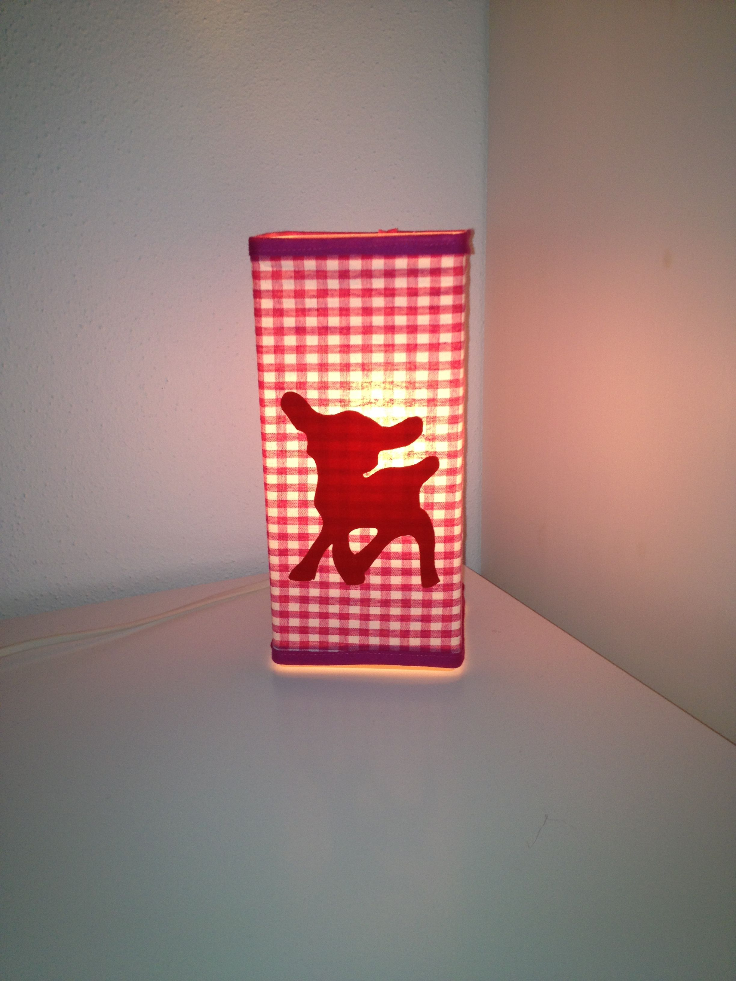 Lampje Op Kamer Pleun En Cato