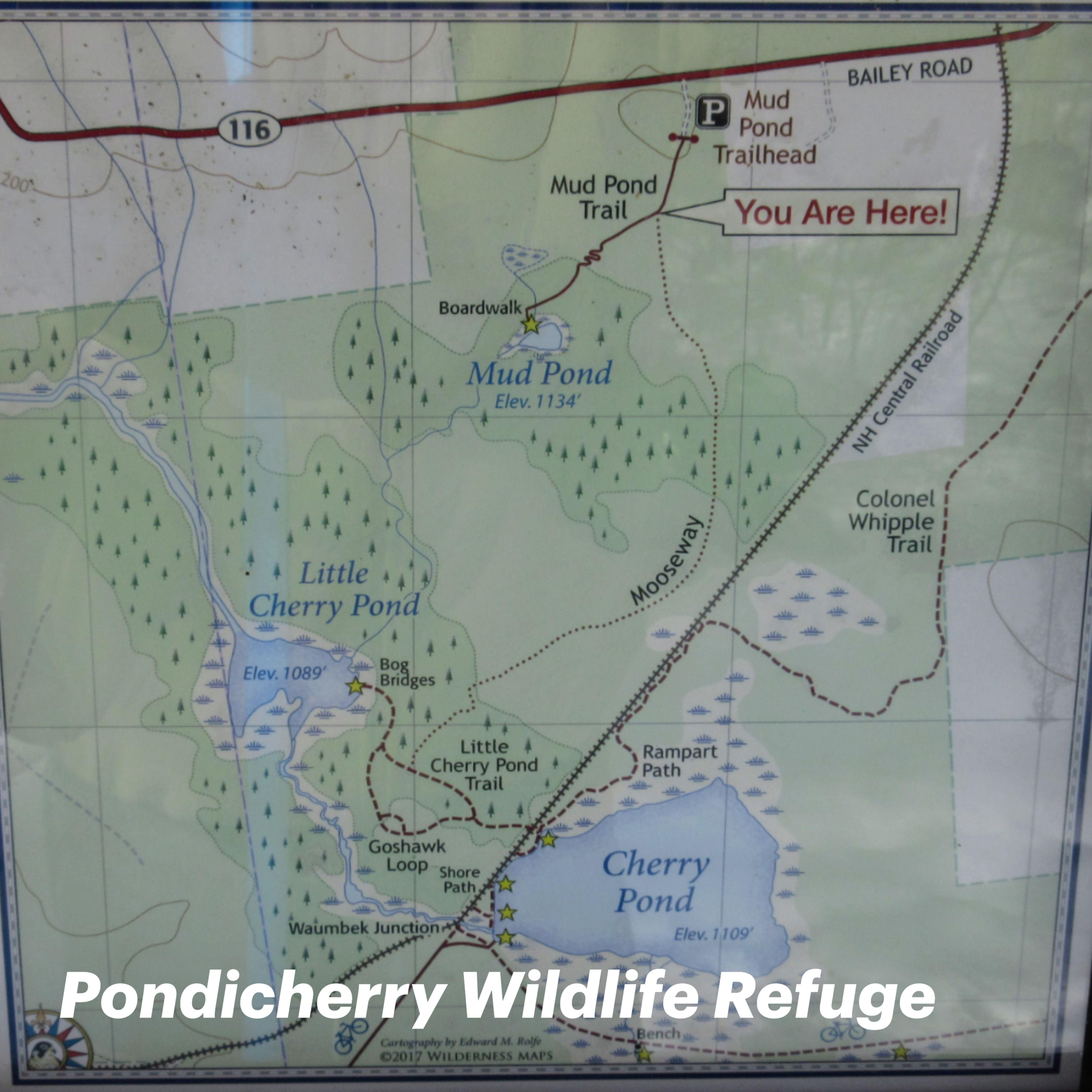 Pondicherry Wildlife Refuge in 2020 Wildlife refuge