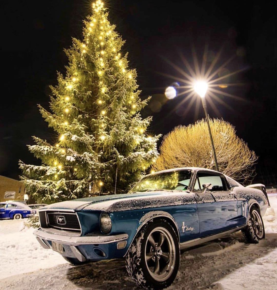 Pin by Robert Rocha on RIDES Mustang, Ford mustang, Riding