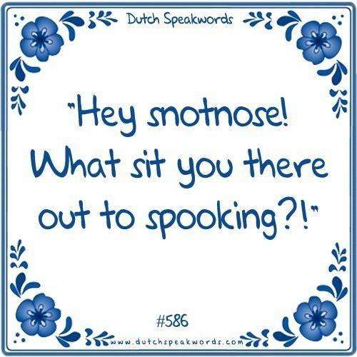 Dutch expressions in English: He snotneus, wat zit je daar  uit te spoken?