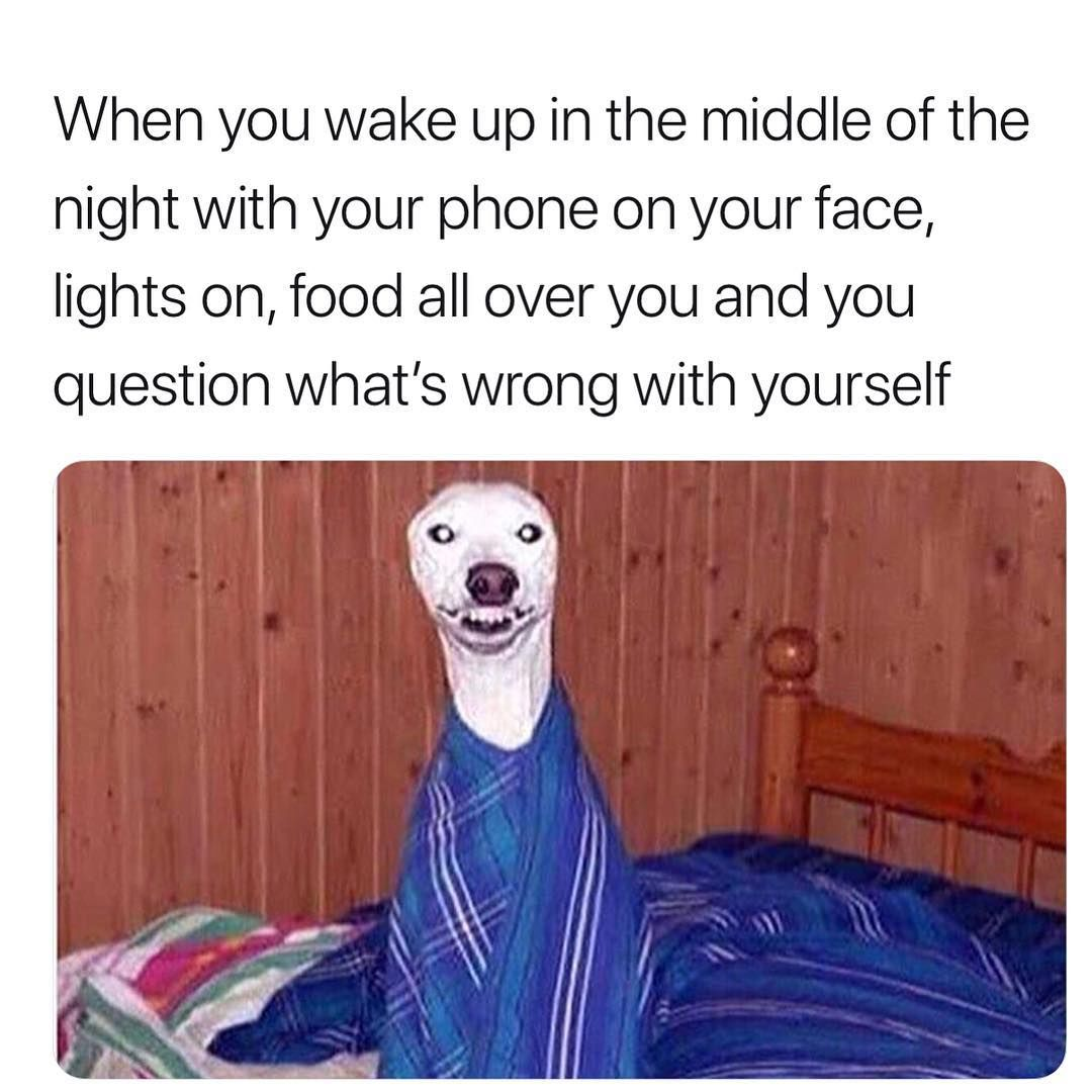 When You Wake Up In The Middle Of The Night With Your Phone On Your Face Lights On Food All Over You And You Question What S Wrong With Yourself This Or