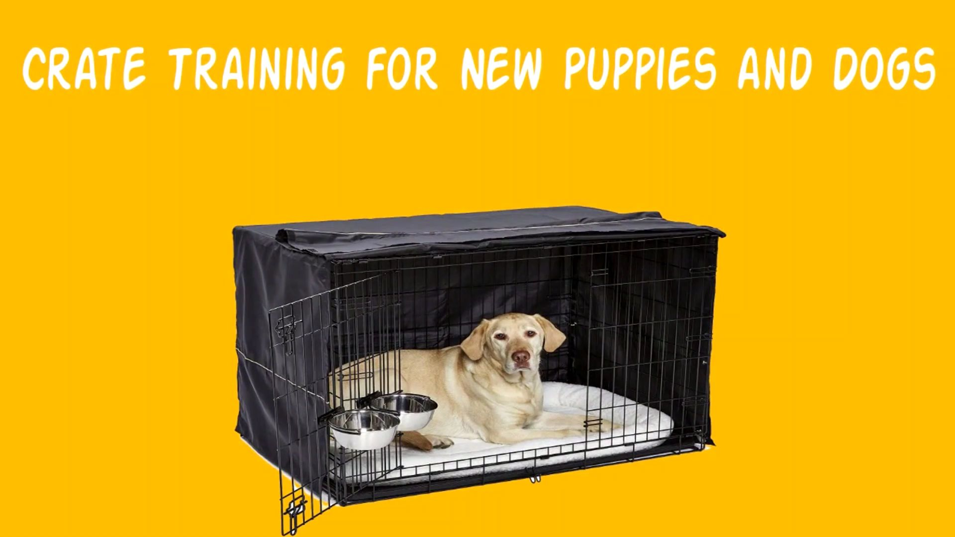 Crate Dog Training Tips Crate Training For New Puppies And Dogs