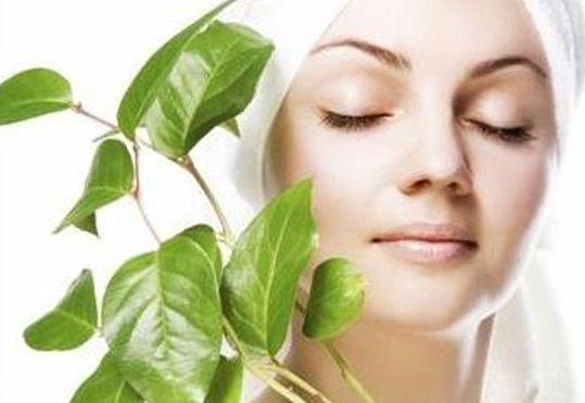 خلطة السدر للوجه تجربتي للتبييض و لتفتيح الجسم سريعا بشرة وشعر Best Natural Skin Care Natural Skincare Recipes Skin Care Recipes