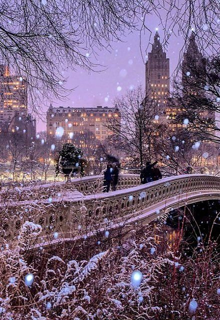 Bow Bridge In Central Park New York City Winter By