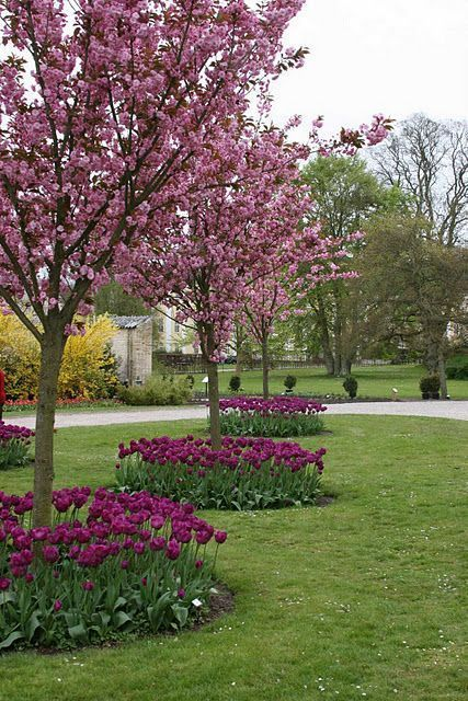 Flower Garden Ideas Around Tree 12 amazing ideas for flower beds around trees | flower, gardens