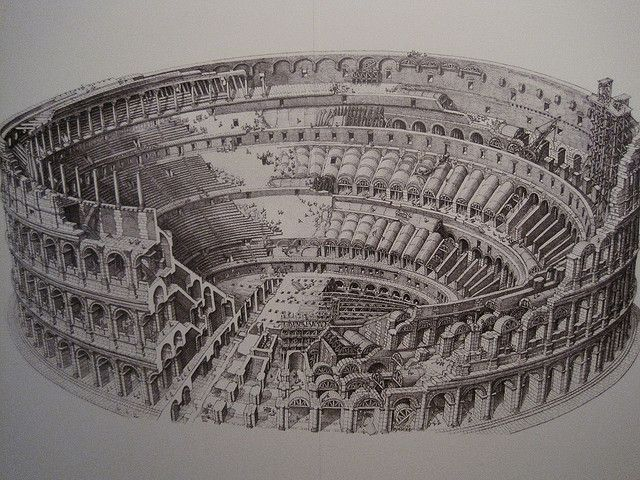 This Drawing Of The Colosseum Shows The Many Layers And