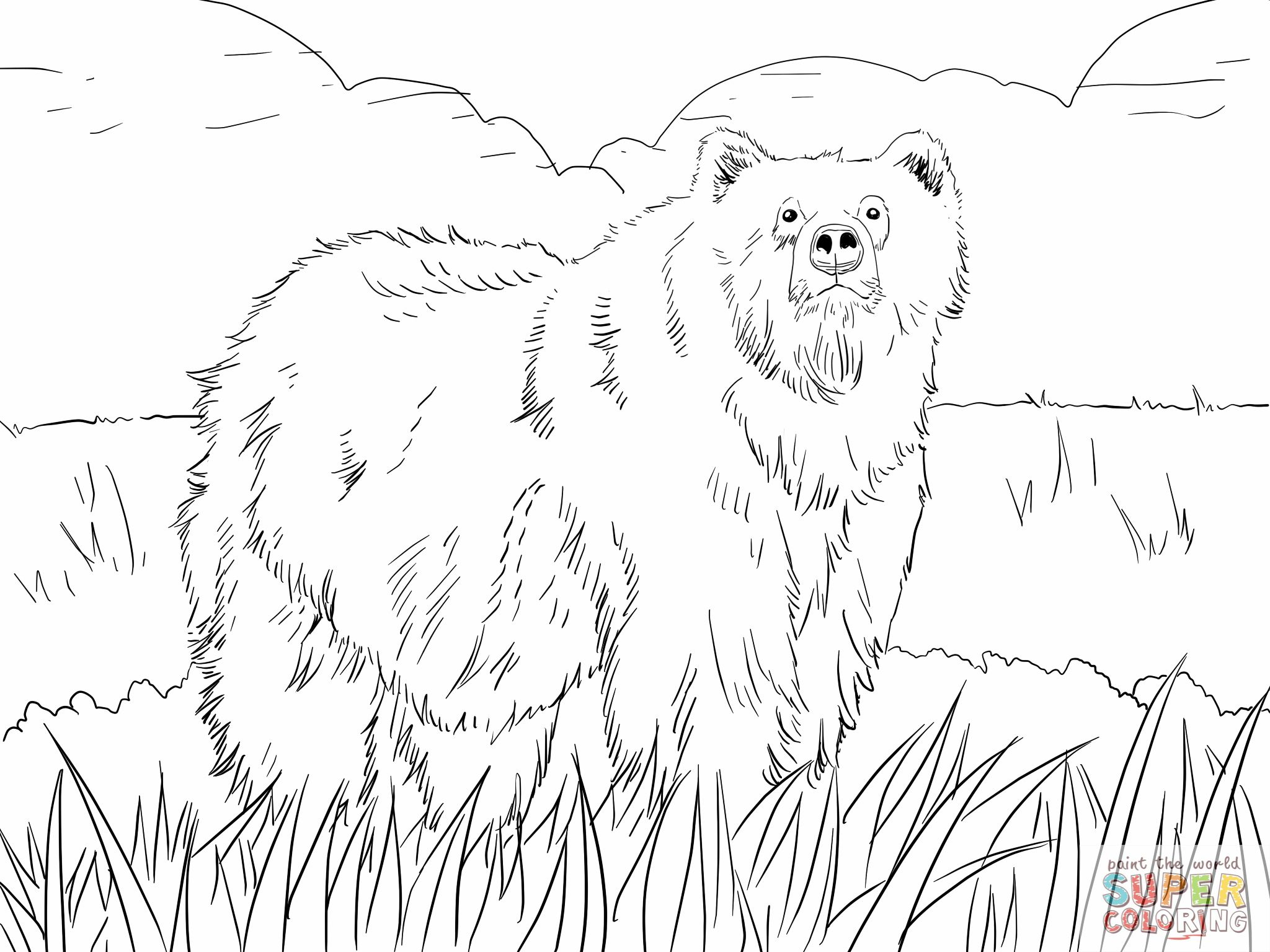 Alaskan Grizzly Bear Coloring Online Super Coloring Bear Coloring Pages Animal Coloring Pages Polar Bear Coloring Page