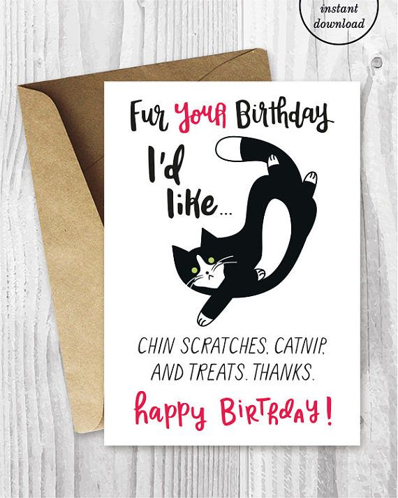 Funny Cat Birthday Cards Instant Download Tuxedo Printable Black And Whit