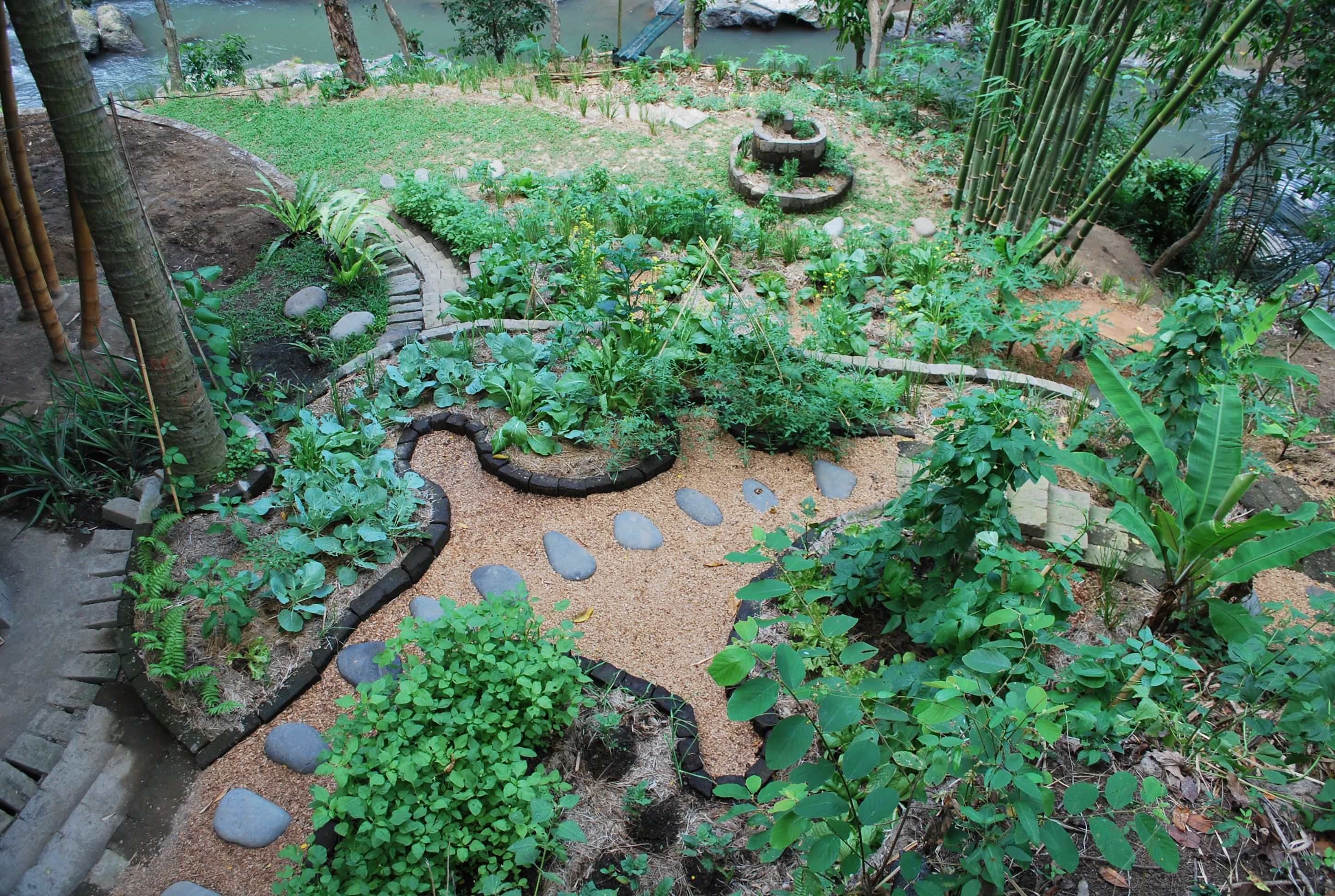 permaculture garden green village bali indonesia