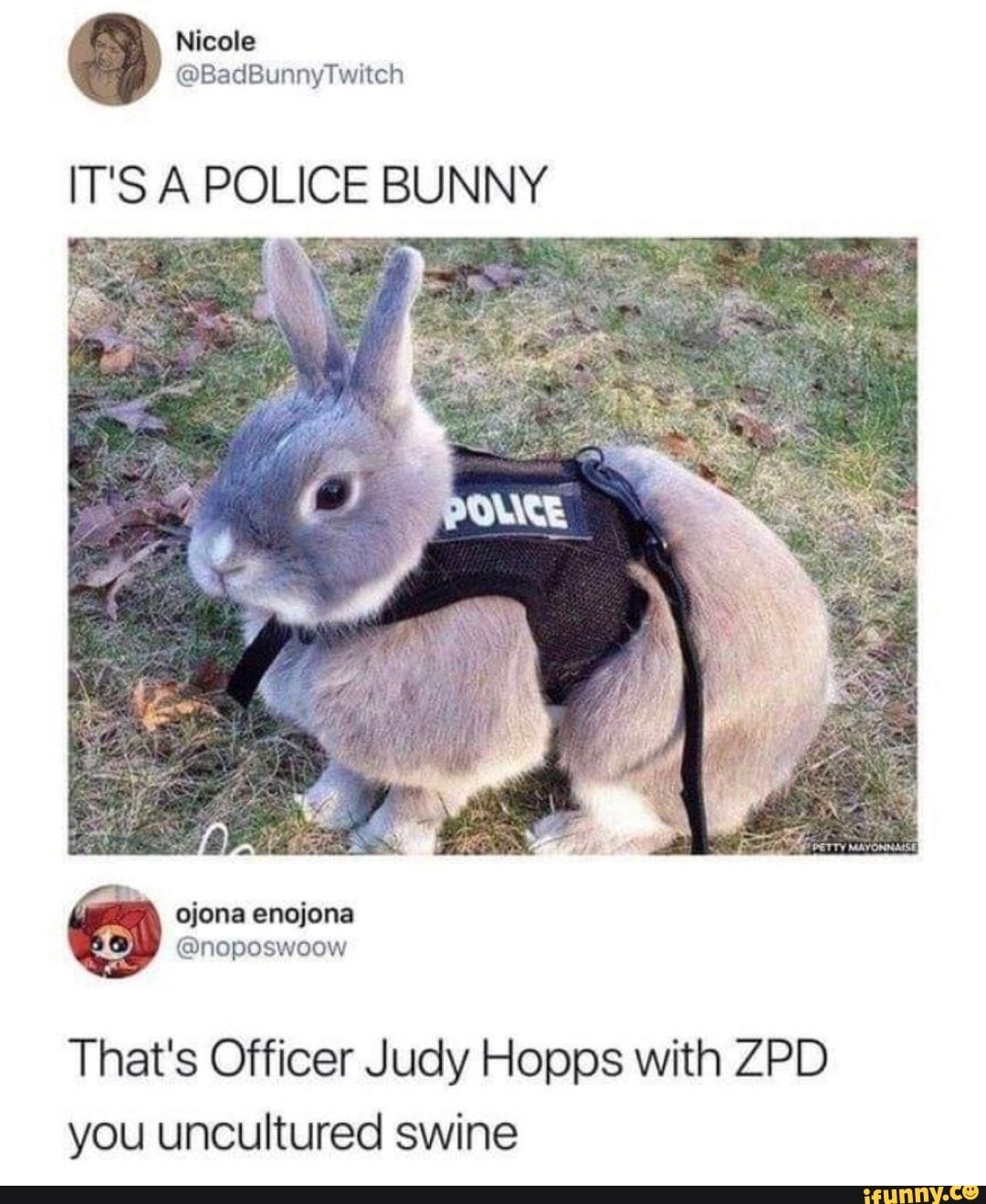 Pin On Funny Zootopia Memes A list of 26 titles. pin on funny zootopia memes