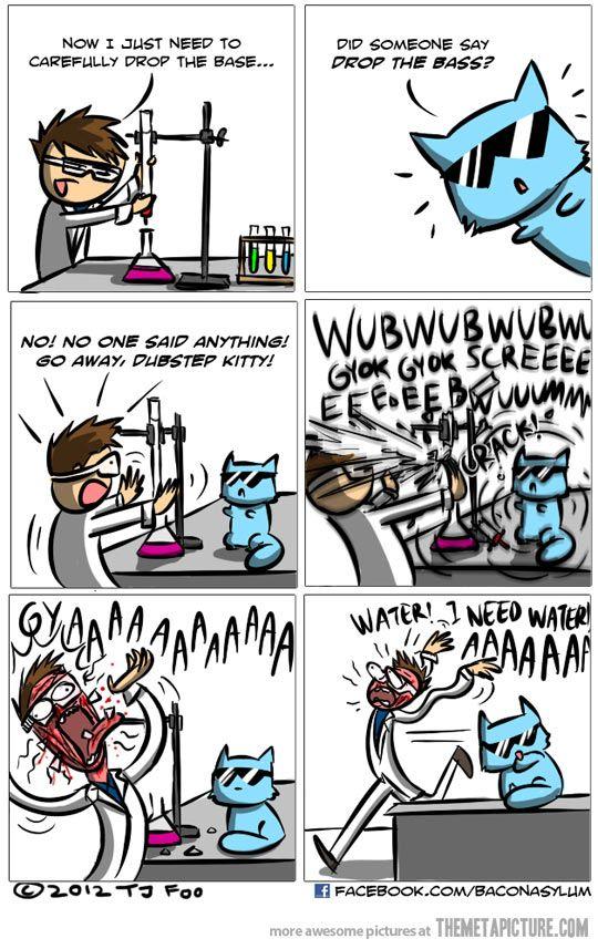 Dubstep Cat Nerd At Heart Dubstep Comics Chemistry Jokes