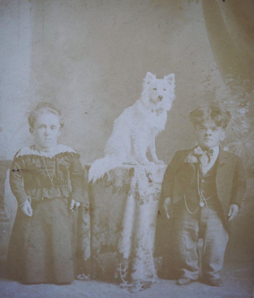 Victorian Cabinet Card photo Dwarf couple Circus Trick Samoyed Spitz Eskimo dog