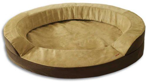 Dolce Vita Therabed Oval Heated Pet Bed Medium 30 X 26 X 8 You