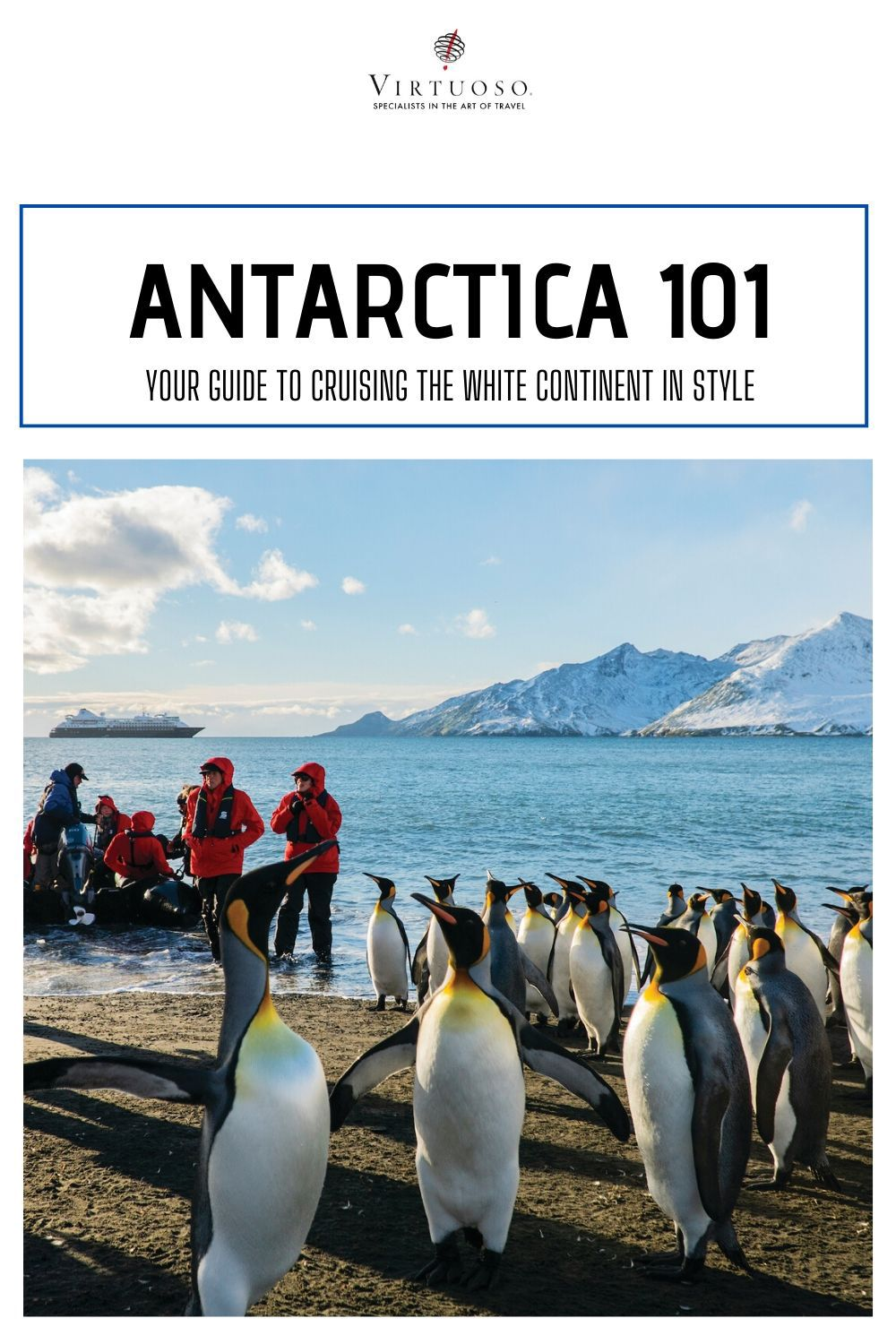 How to Cruise to Antarctica in Style in 2020 (With images