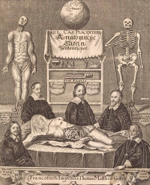 deathandmysticism:  Giulio Casserio, Anatomische Tafeln,...