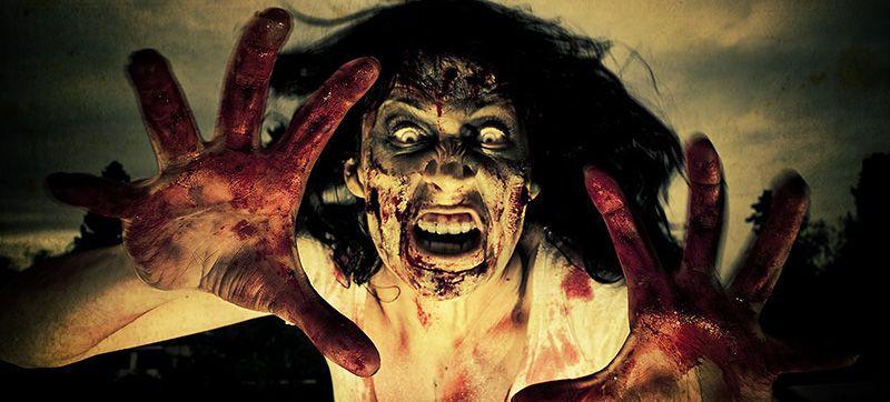 zombie apocalypse wallpaper Google Search Best funny