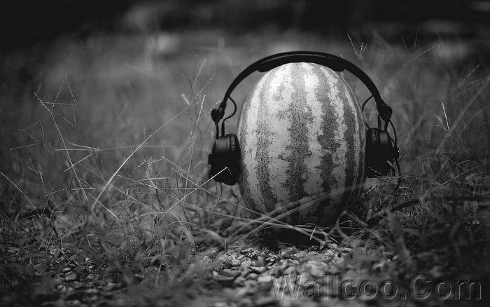 summer_melon