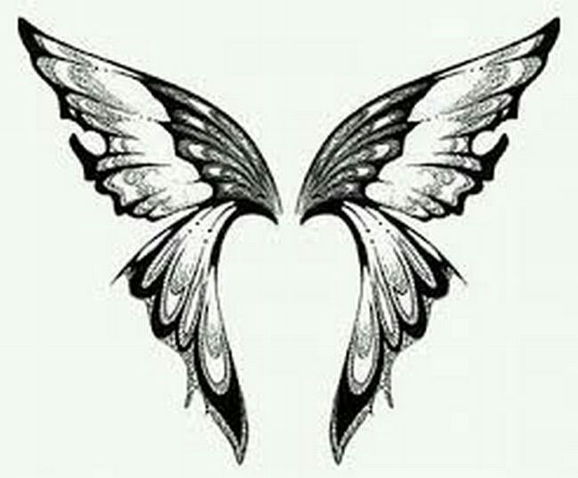 Butterfly wings | Drawings, Designs, and DIY | Pinterest ...