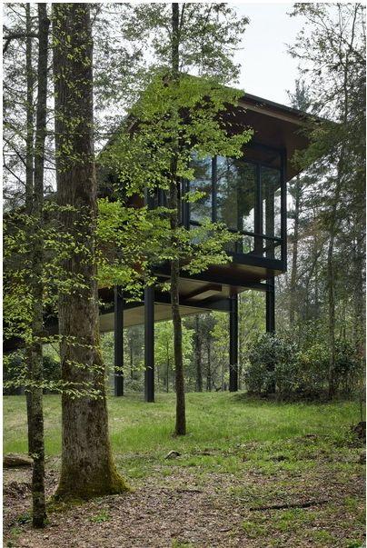 Modern Cabin On Stilts House On Stilts Highland Homes Modern Cabin