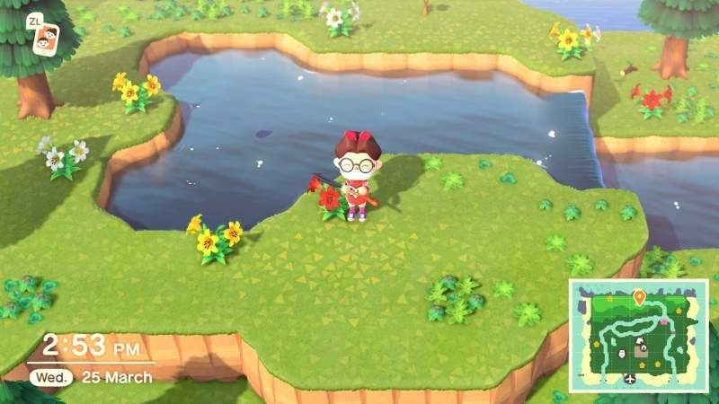 How To Catch Stringfish In Animal Crossing New Horizons In 2020