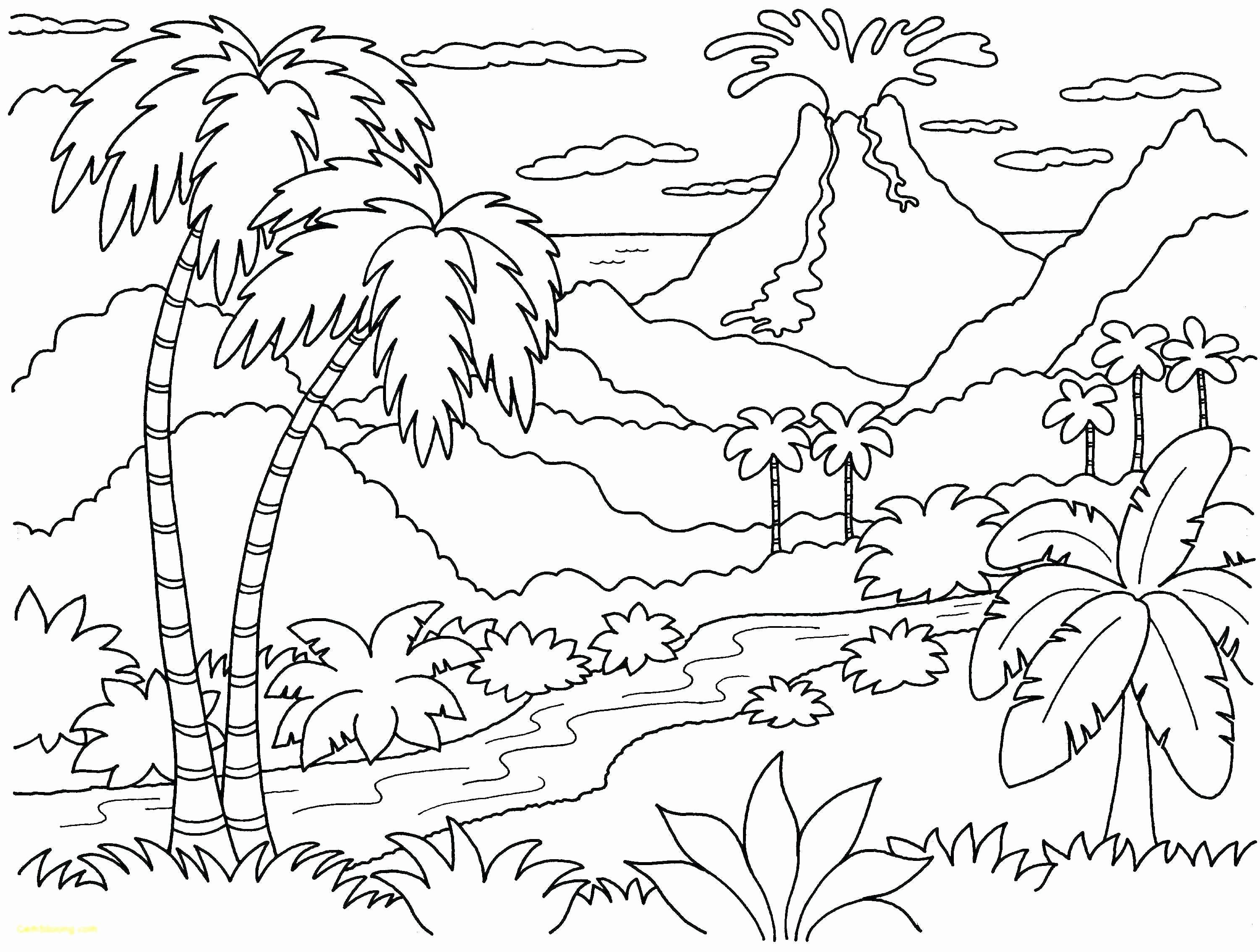 Tree Coloring Pages To Print Luxury Palm Tree Coloring Sheets Reddogsheet Beach Coloring Pages Coloring Pages Nature Mandala Coloring Pages