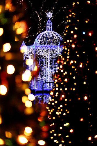 Christmas Illumination#1 Japan, Christmas lights and Christmas time