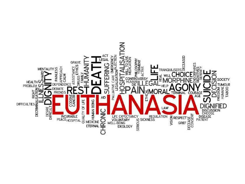 euthanasia preserve quality life Pain can't justify euthanasia, it can be made tolerable with modern medicines modern palliative care is immensely flexible and effective, and helps to preserve quality of life as far as is possible there is no need for terminally ill patients ever to be in excruciating pain, even at the very end of the course of their illness.