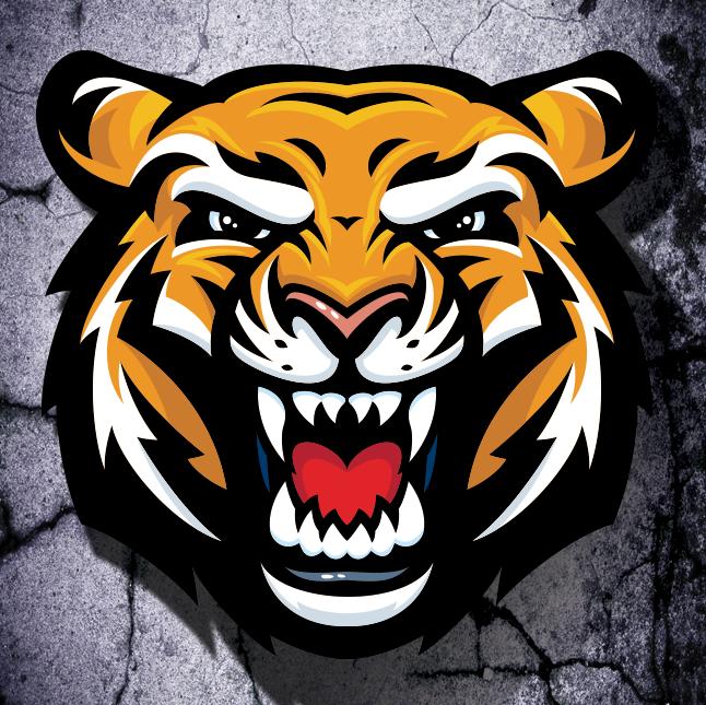Screen Shot 2012 10 04 At 8 31 13 Pm Png By Dave Turton Tiger Dance Mascot Tiger Art