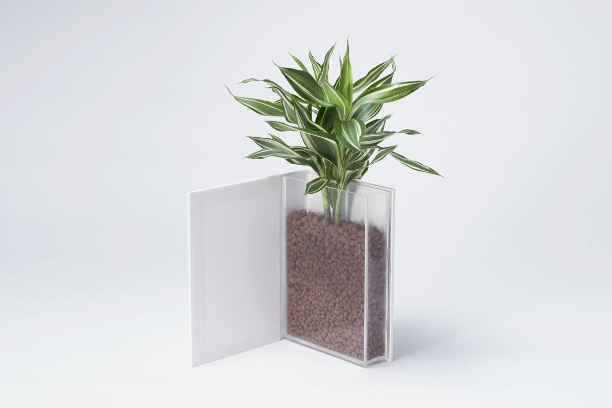 unconventional storage space products love this plant in a book