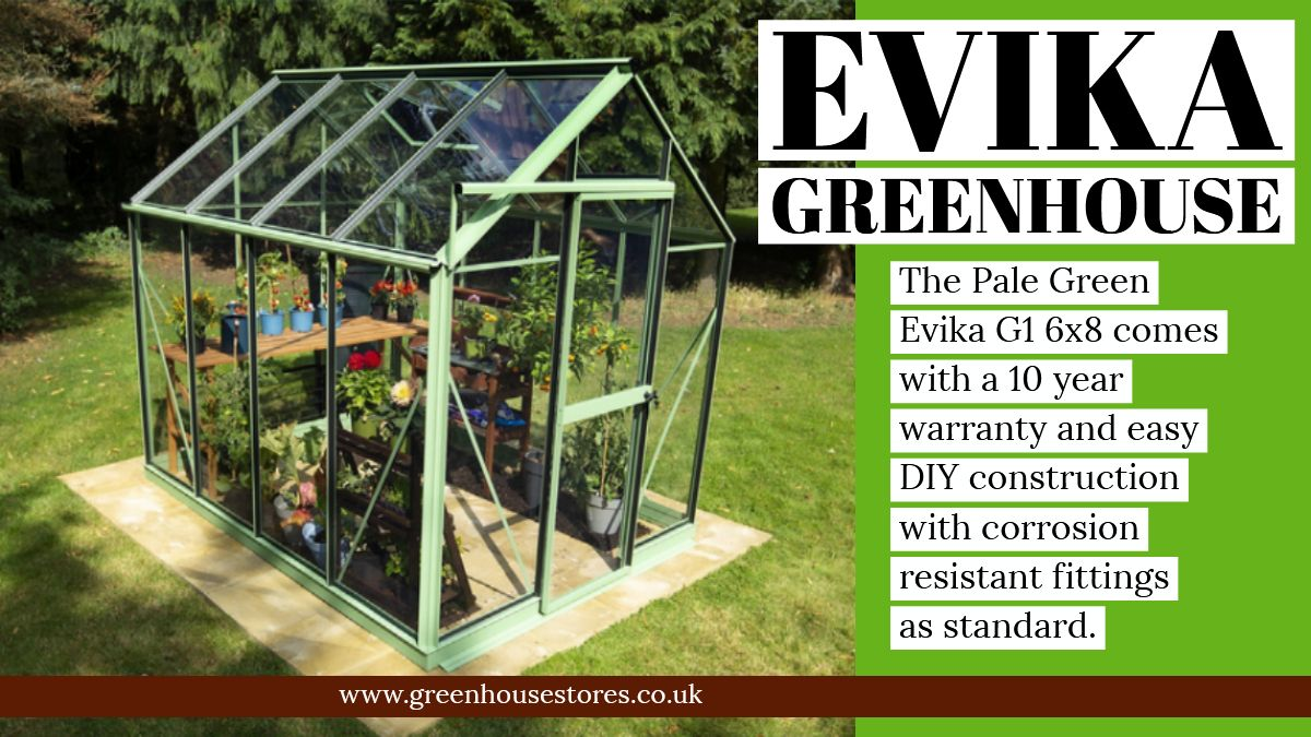 Evika greenhouse greenhouse buy greenhouse greenhouse