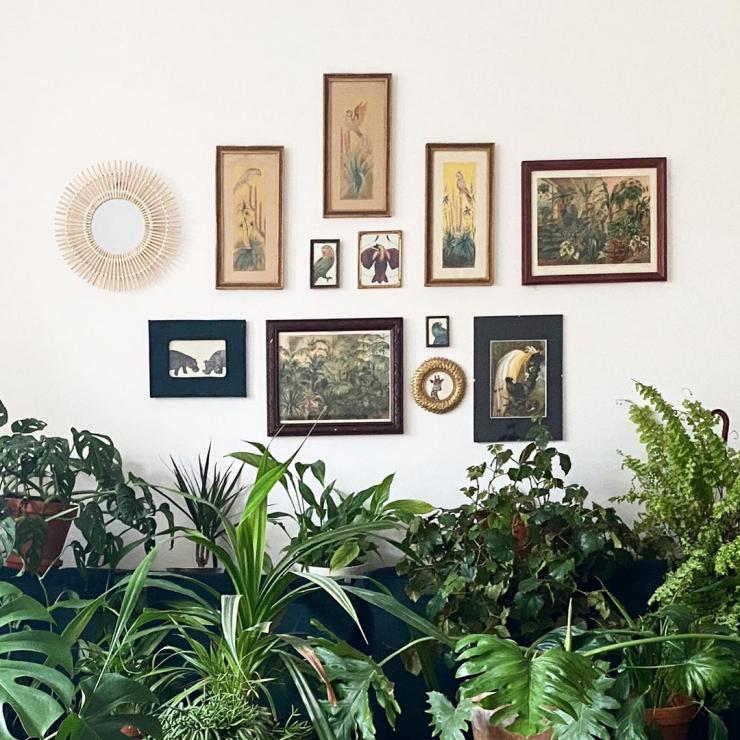 Dom Ady i jej rodziny - Zielony segment Ady i jej rodziny - #instahome z ELLE Decoration