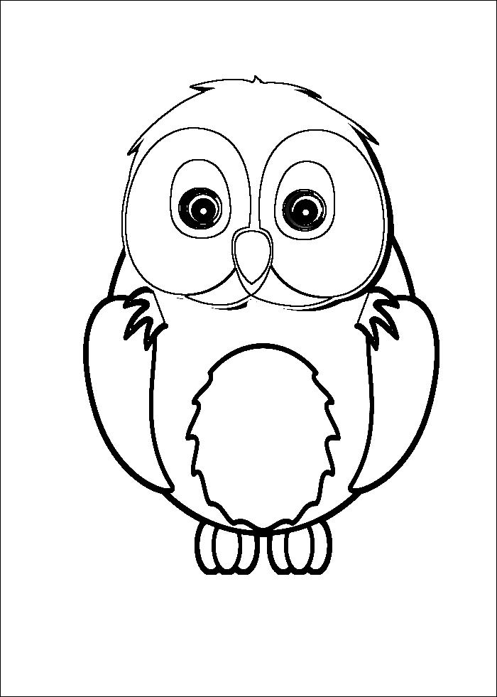 Bilder von eulen kostenlos  owls  Pinterest  Eule Kostenlos