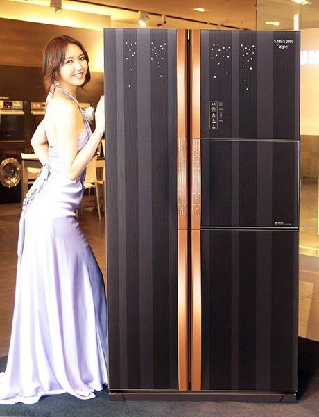 Charming Samsung Ziepel E Diary Refrigerator Idea