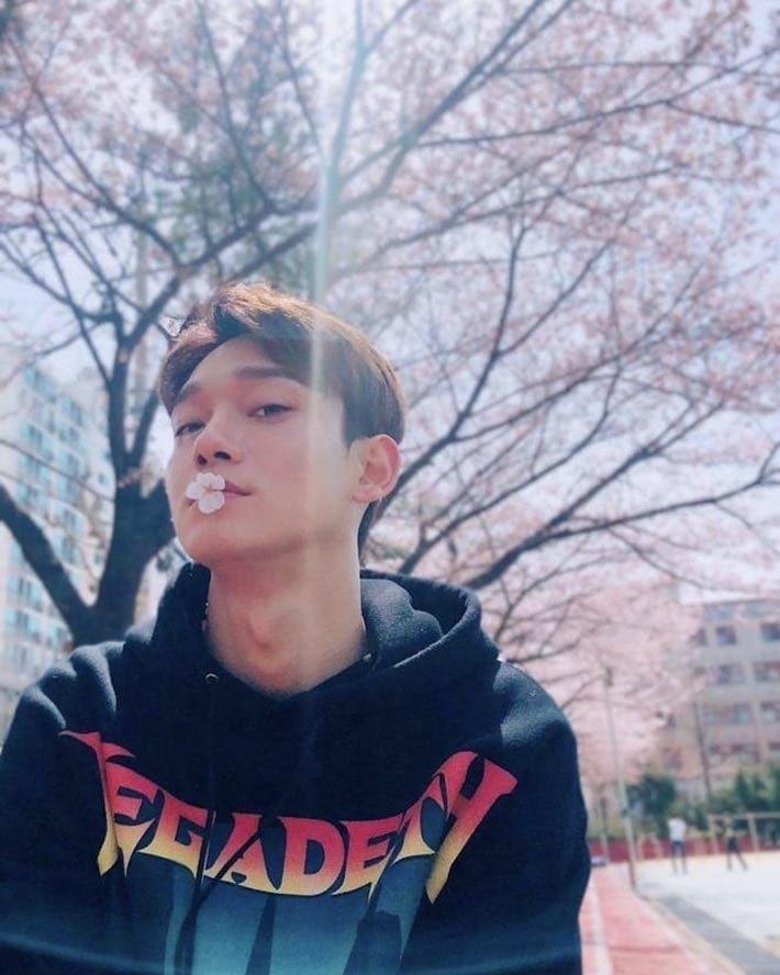"""Chen Chile on Instagram: """"{190407} Actualización en la cuenta oficial de EXO-L ACE con #Chen. Cr. Lysn app (EXOL ACE) . . . . . .…"""""""