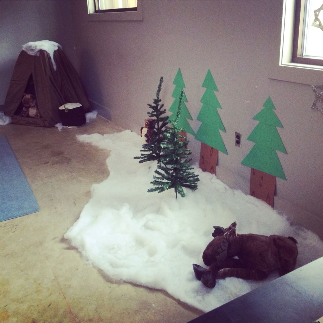 I love my deciduous forest in my science room. It turned ...