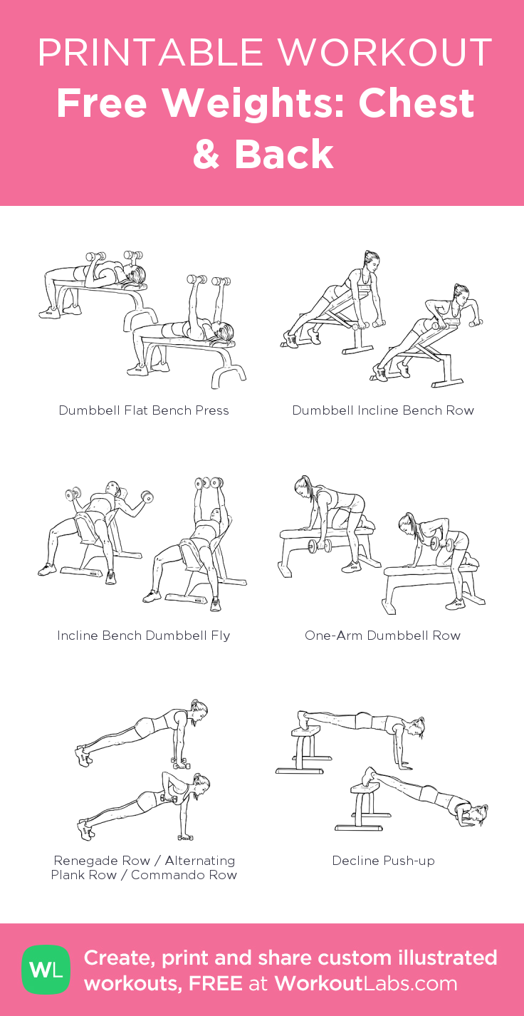 free weights chest back my visual workout created at workoutlabs