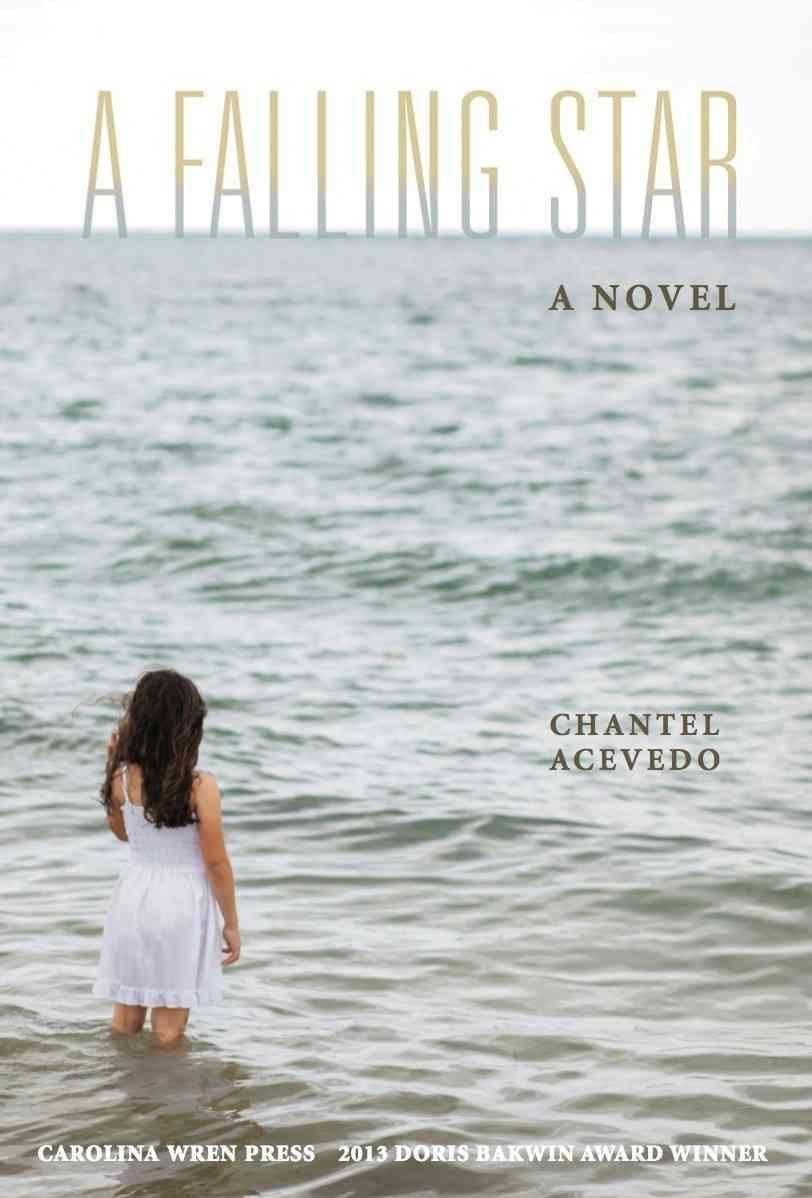 A Falling Star: A Novel