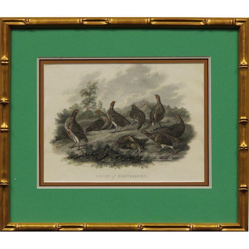 Best Covey Of Partridges Partridge Artwork Painting 640 x 480