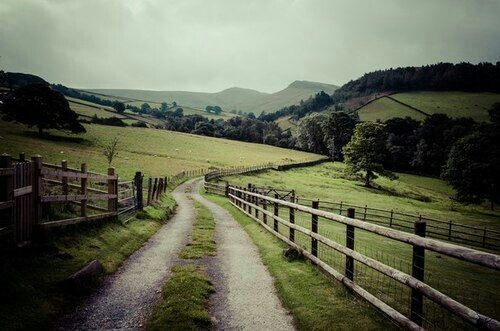 i WANT TO LIVE DOWN A LANE LIKE THIS.